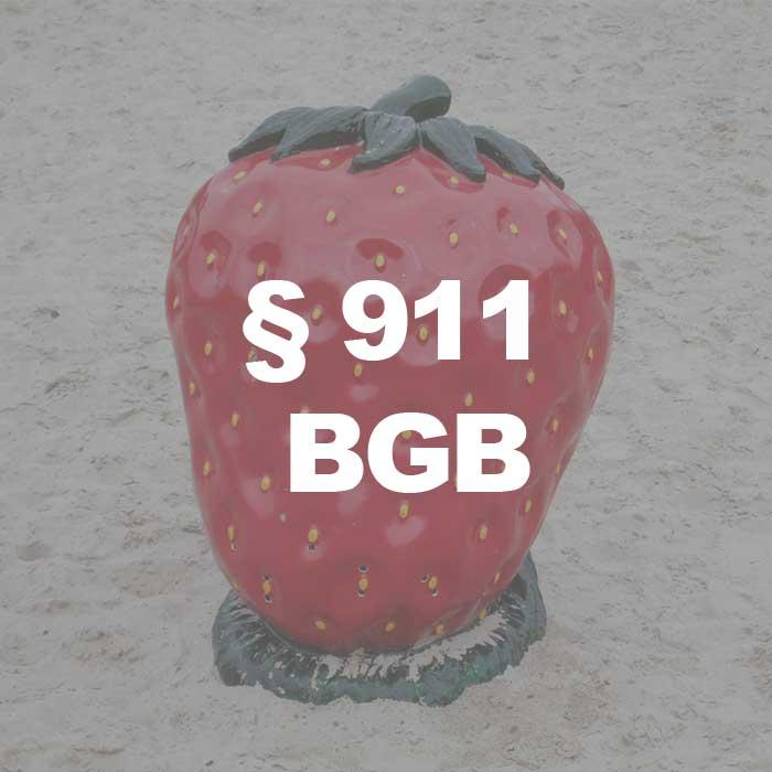 Foto illustriert Überfall-§911BGB