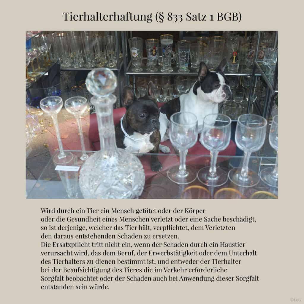 Tierhalterhaftung-(§-833-Satz-1-BGB)-2048