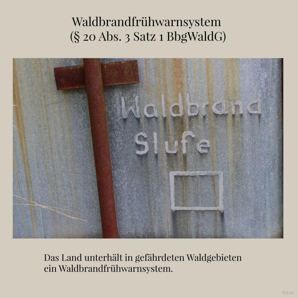 Waldbrandfrühwarnsystem-(§-20-Abs.-3-Satz-1-BbgWaldG)-2048
