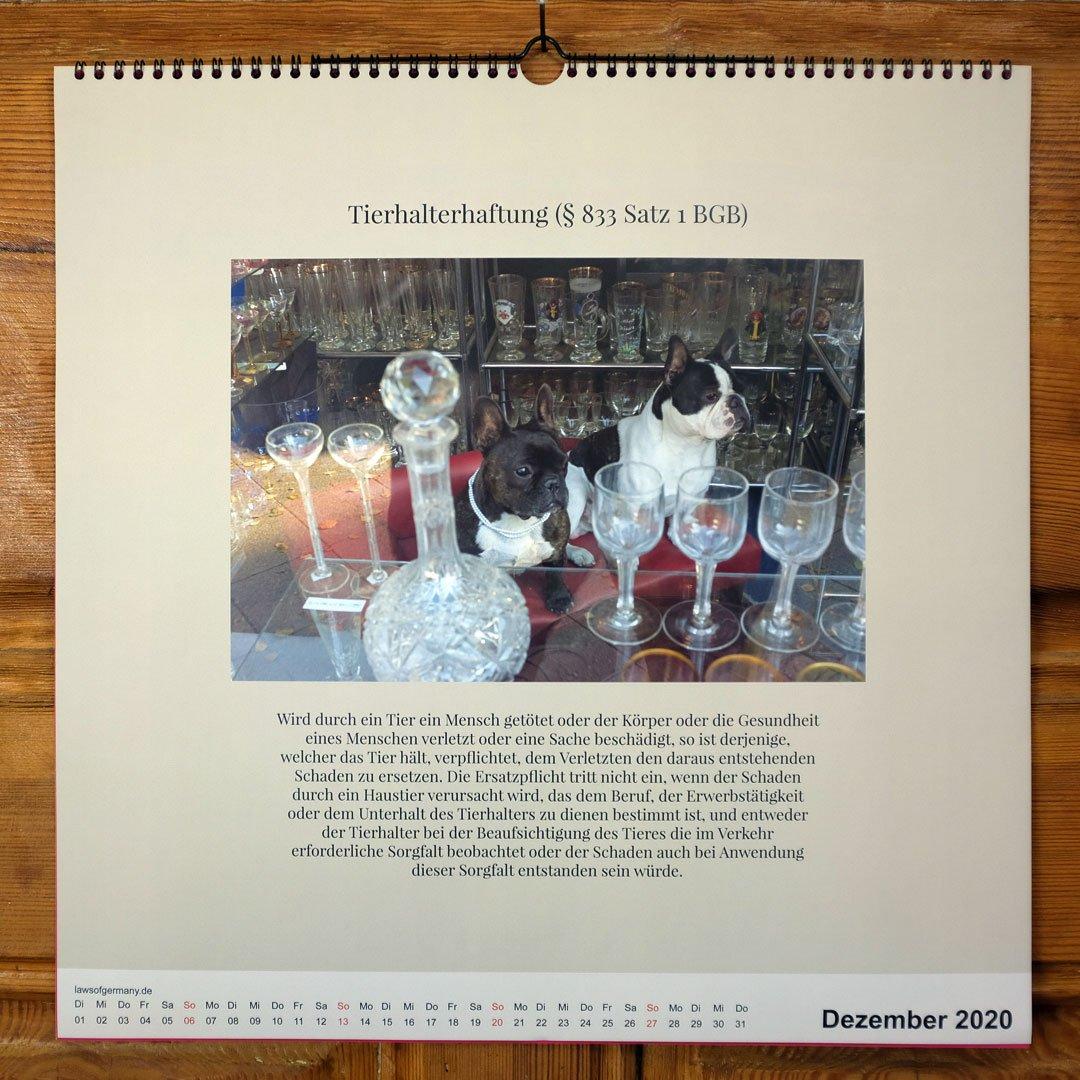 Laws-of-Germany-Rechtsbilder-Kalender-Jahr-2020-12